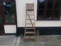 Tall steps for garden pots