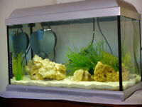 Used fish tank aquarium 60 litres with stand cabinet. Complete, everything included