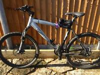 Carrera men's mountain bike