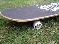 'No Fear' Skateboard