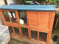 2 Rabbits and large hutch
