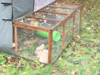 Rabbit Hutch with Run and Insulated outdoors cover New Costs £400