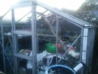 Greenhouse 10ft by 8