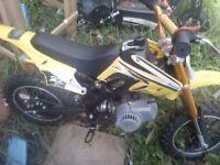 Orion 49cc mini moto