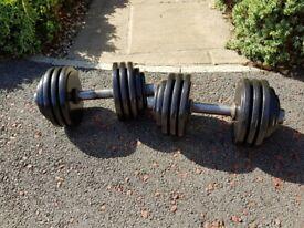 35kg steel dumbbells