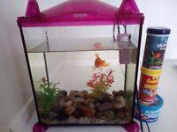 Aquarium with fish and equipment.