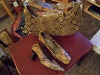 Ladies Handbag and Shoes
