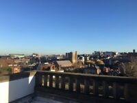Superb Studio Apartment with Roof Garden, 200 yards from Guildford High St and Station