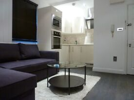 Beautiful Spacious one Bedroom Flat with private rear patio-garden