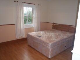 Double Room ensuite to rent in Smallfield Surrey