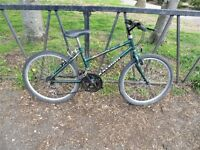 """Ladies RALEIGH Mountain Bike. 15"""" Frame. Fully Serviced, Ready To Ride & Guaranteed. 15 Speed"""