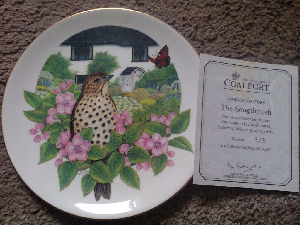 Coalport Plate - The Songthrush