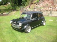 Classic Morris mini
