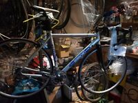 Ambrosio Road Bike
