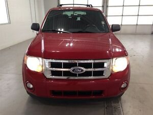 2011 Ford Escape XLT| SYNC| CRUISE CONTROL| BLUETOOTH| 133,370KM Kitchener / Waterloo Kitchener Area image 9