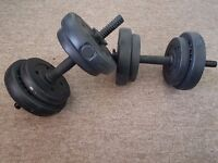 2 WEIGHTS (DUMBBELLS)