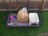 Rabbit / Guinea Pig Indoor Cage 100 & Accessories