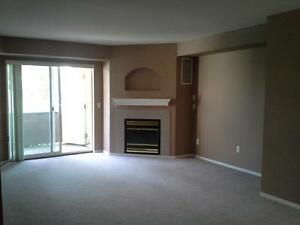 3 BEDROOM CONDO, GROUND FLOOR, END UNIT WITH LARGE PATIO!