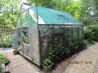 10' x 6' Greenhouse at bargain price