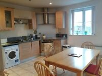 Double room with own parking and own bathroom available in 2 bedroom flat share
