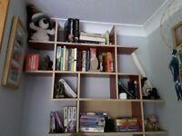 Book shelf/display unit