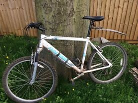 Men's mountain bike for sale