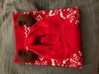 Dog Christmas jumper