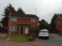 double room to let in family home cottingham rd