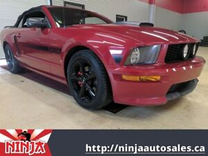 2009 Ford Mustang GT/CS-Warrior Audio-Leather
