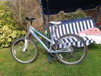 Vertigo Woman's bike