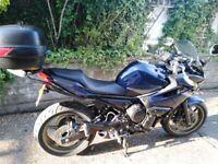 Yamaha, XJ, 2009, 599 (cc)
