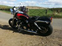Triumph Speedmaster 865, low mileage, alarm triumph cat1 fitted, service history, lots of extras !!