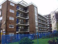 E9 - HACKNEY / STUNNING 3 DOUBLE BEDROOM FIRST FLOOR FLAT AVAILABLE NOW !! CALL ME