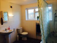 LOVELY BRIGHT SINGLE ROOM , 8 MNT EAST INDIA DLR, 5 MNT CANNING TOWN, CANARY WHARF,182205