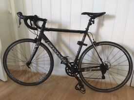CANNONDALE CAAD 8 SORA 15 56-BBQ