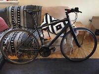 Specialized Sirrus Sport 2015 M commuter city bike