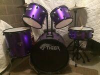 Tiger. Drum kit.