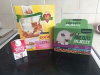 Kitten milk, food and biscuits