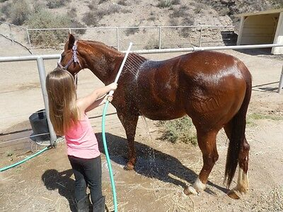 - Horse Wash Wand EZ Deep Cleaning Washer Sprayer Rinse UV Protected Water Rake
