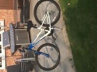 Mountain Bikes for sale