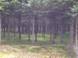 350 000$ - Terre à bois à vendre à St-André-Du-Lac-St-Jean