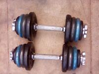 dumbbells set 2 x 11 kg in total 22 kg