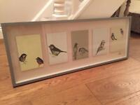 BIRD PICTURE/PAINTING