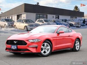 2019 Ford Mustang EcoBoost,ONLY 250 KMS!