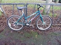 """Small Frame Ladies Mountain Bike Bicycle. VGC. Fully Serviced. Ready To Ride. Guaranteed. 16"""" Frame"""