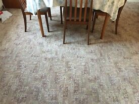 Ex Dining Room Carpet