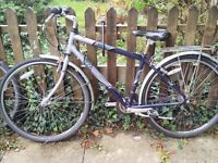 Raleigh Pioneer Metro GLX 2007 Hybrid Bike with mud guard and rear carrier