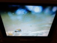 15 inch Portable TV and digi box, excellent picture £30