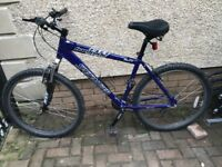 Great Specialized hardrock sport 19 inch L frame Mtb mountain bike hardtail £120