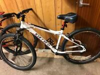 Carrera velour mountain bike